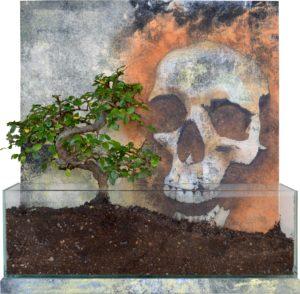Emiliano-Stella-Human-needs-tecnica-mista-su-tessuto-incollata-su-legno-vetro-terriccio-bonsai(olmo)-40x40x12cm-c-2019